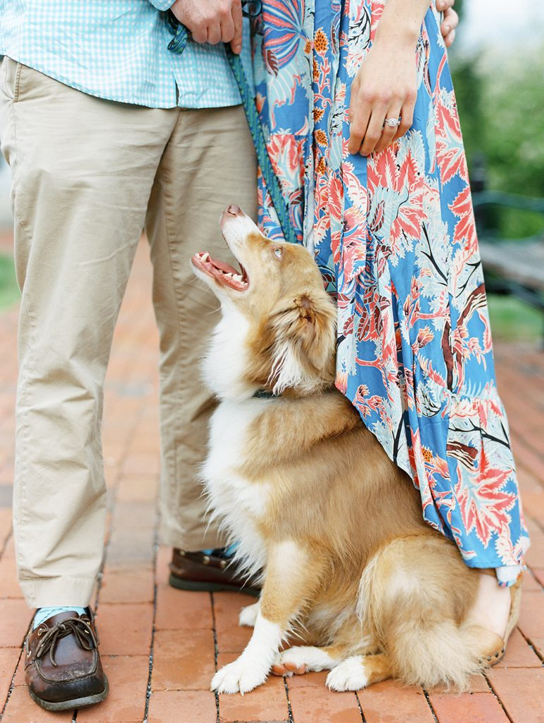 Engagement photo ideas with pets