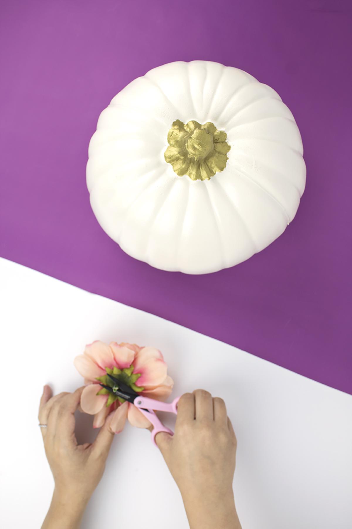 DIY Painted Pumpkins Step 2 cut the stem off your flower