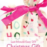 Last Minute Easy DIY Christmas Gift